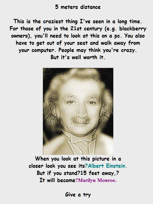 einstein marilyn monroe illusion